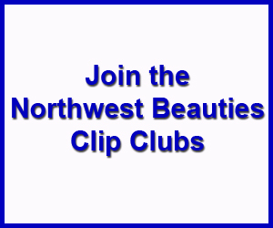 Northwest Beauties Clip Club